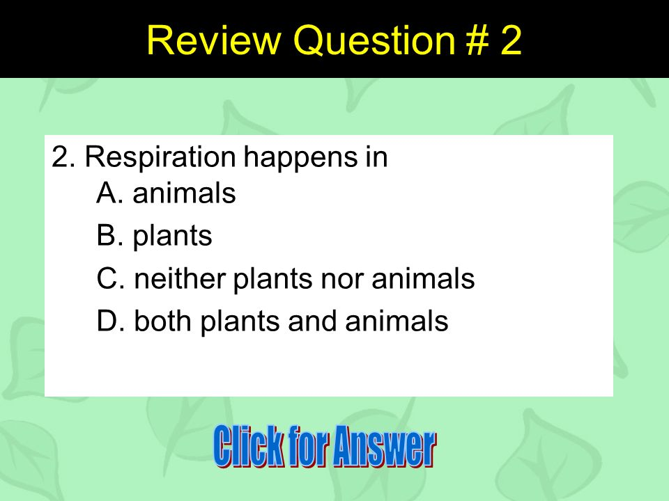 Review Question # 2 2. Respiration happens in A. animals B.