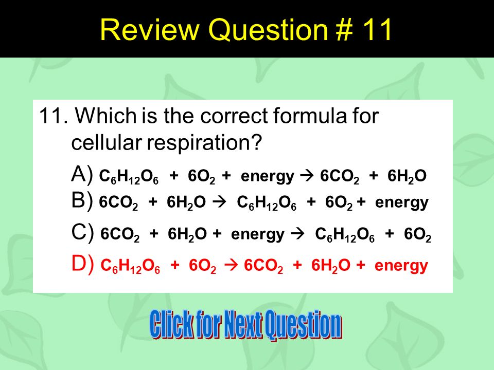 Review Question # Which is the correct formula for cellular respiration.