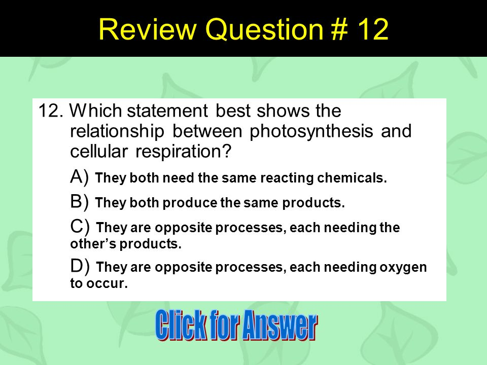 Review Question #