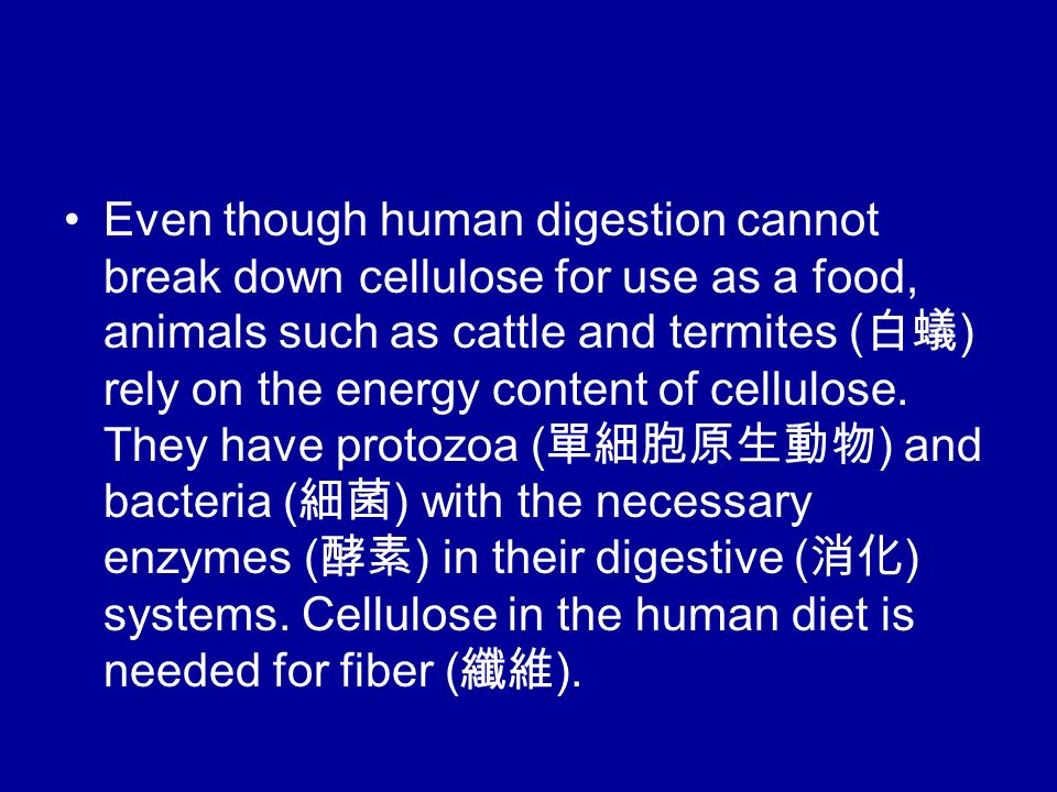 Even though human digestion cannot break down cellulose for use as a food, animals such as cattle and termites ( 白蟻 ) rely on the energy content of cellulose.