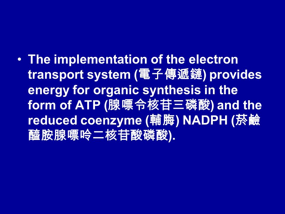 The implementation of the electron transport system ( 電子傳遞鏈 ) provides energy for organic synthesis in the form of ATP ( 腺嘌令核苷三磷酸 ) and the reduced coenzyme ( 輔脢 ) NADPH ( 菸鹼 醯胺腺嘌呤二核苷酸磷酸 ).