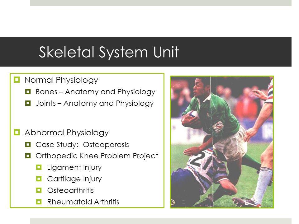 Großartig Orthopedic Anatomy And Physiology Bilder - Menschliche ...