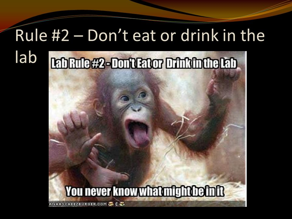 Rule #2 – Don't eat or drink in the lab