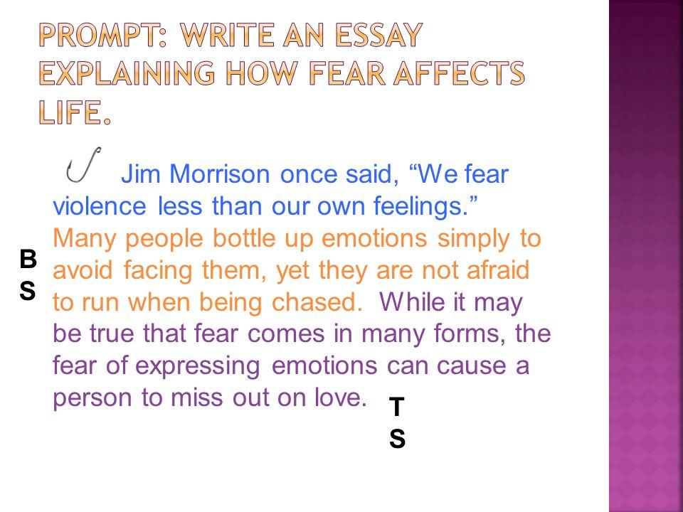 affective essay