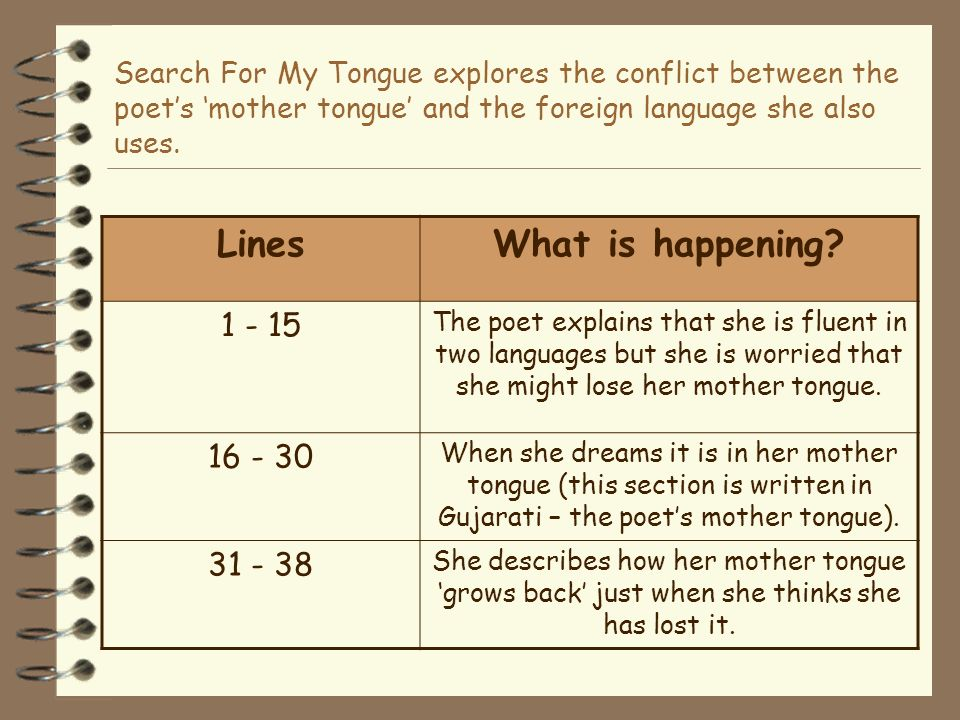 amy tans mother tongue essay In the essay, mother tongue, amy tan informs the reader of the language barrier matters that she underwent as an asian american various individuals are looked down upon because of their poor english language skills.