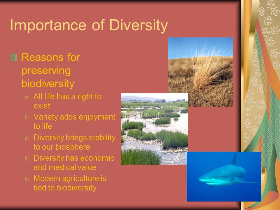 reasons for preserving a diversity of life on earth Culture & religion for a sustainable future form the only possible way forward for life on planet earth despite this diversity.