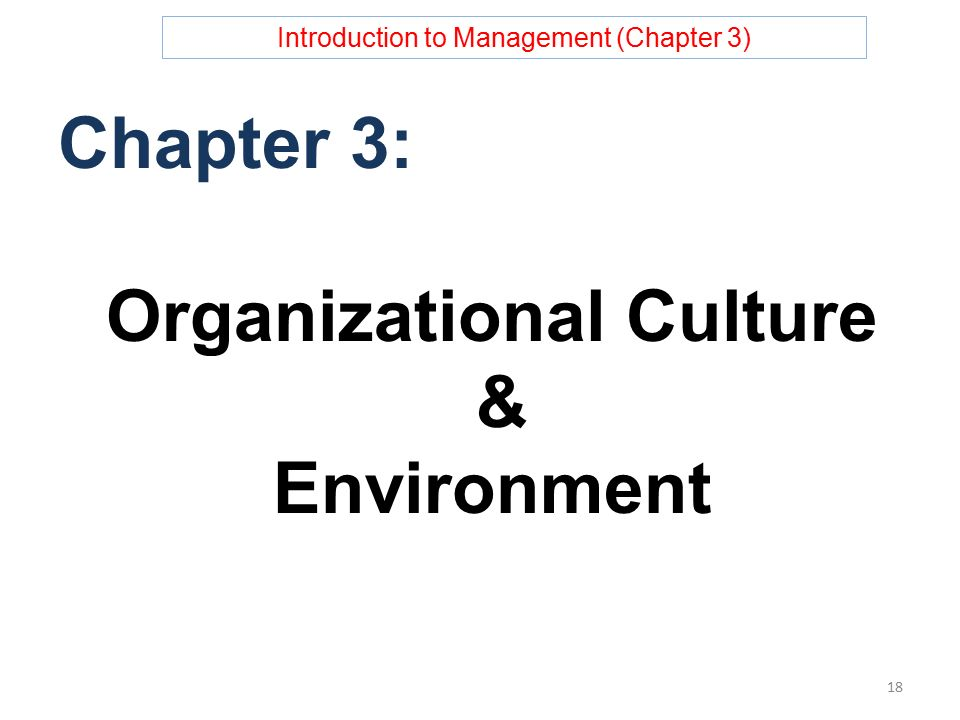 Introduction to Management (Chapter 3) Chapter 3: Organizational Culture & Environment 18
