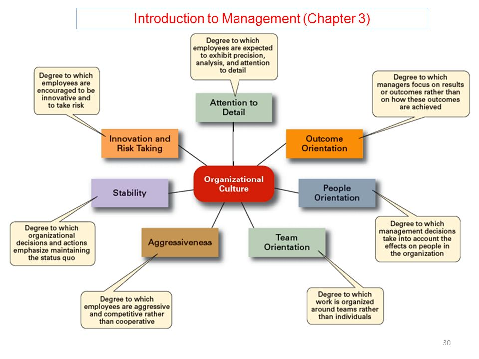 Introduction to Management (Chapter 3) 30