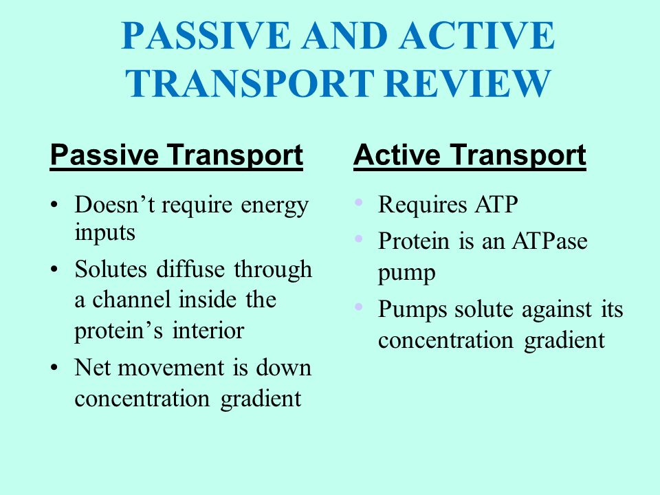 PASSIVE AND ACTIVE TRANSPORT REVIEW Doesn't require energy inputs Solutes diffuse through a channel inside the protein's interior Net movement is down concentration gradient Passive TransportActive Transport Requires ATP Protein is an ATPase pump Pumps solute against its concentration gradient