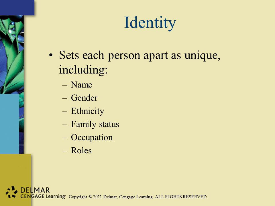 Copyright © 2011 Delmar, Cengage Learning. ALL RIGHTS RESERVED. Identity Sets each person apart as unique, including: –Name –Gender –Ethnicity –Family