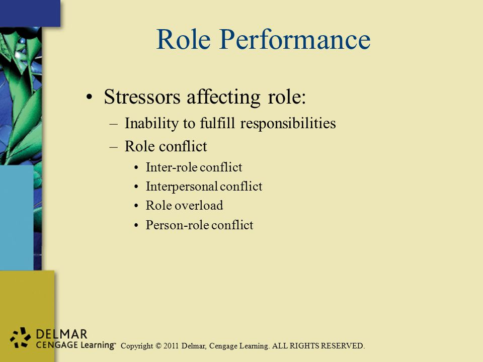 Copyright © 2011 Delmar, Cengage Learning. ALL RIGHTS RESERVED. Role Performance Stressors affecting role: –Inability to fulfill responsibilities –Rol