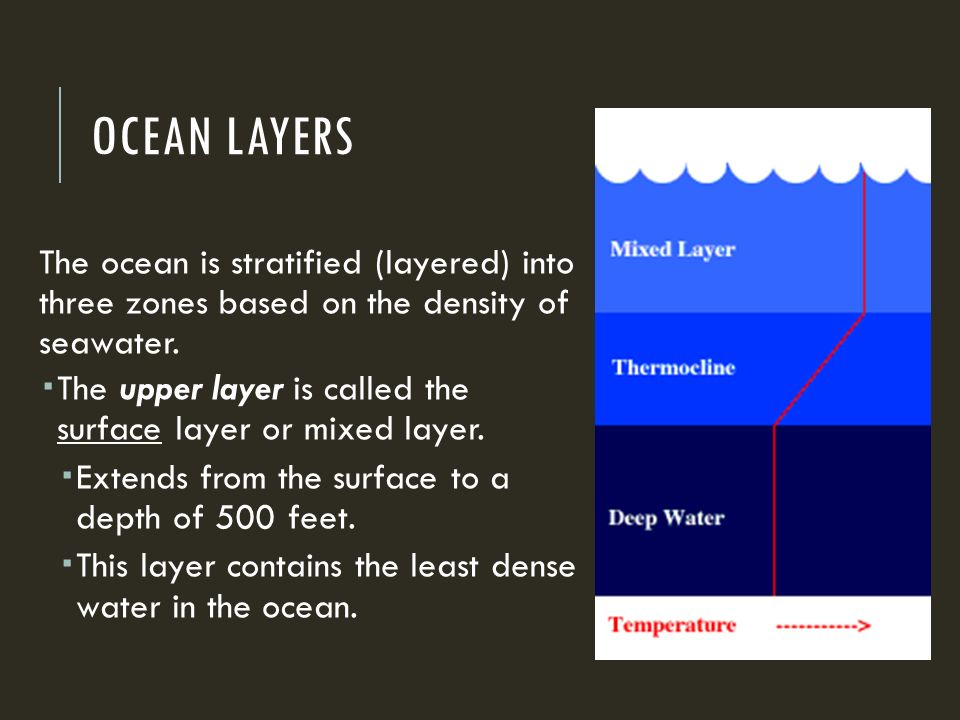 OCEAN LAYERS The ocean is stratified (layered) into three zones based on the density of seawater.