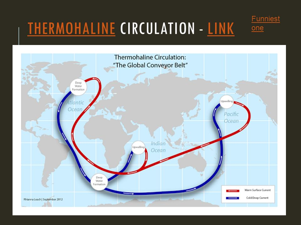 THERMOHALINETHERMOHALINE CIRCULATION - LINKLINK Funniest one