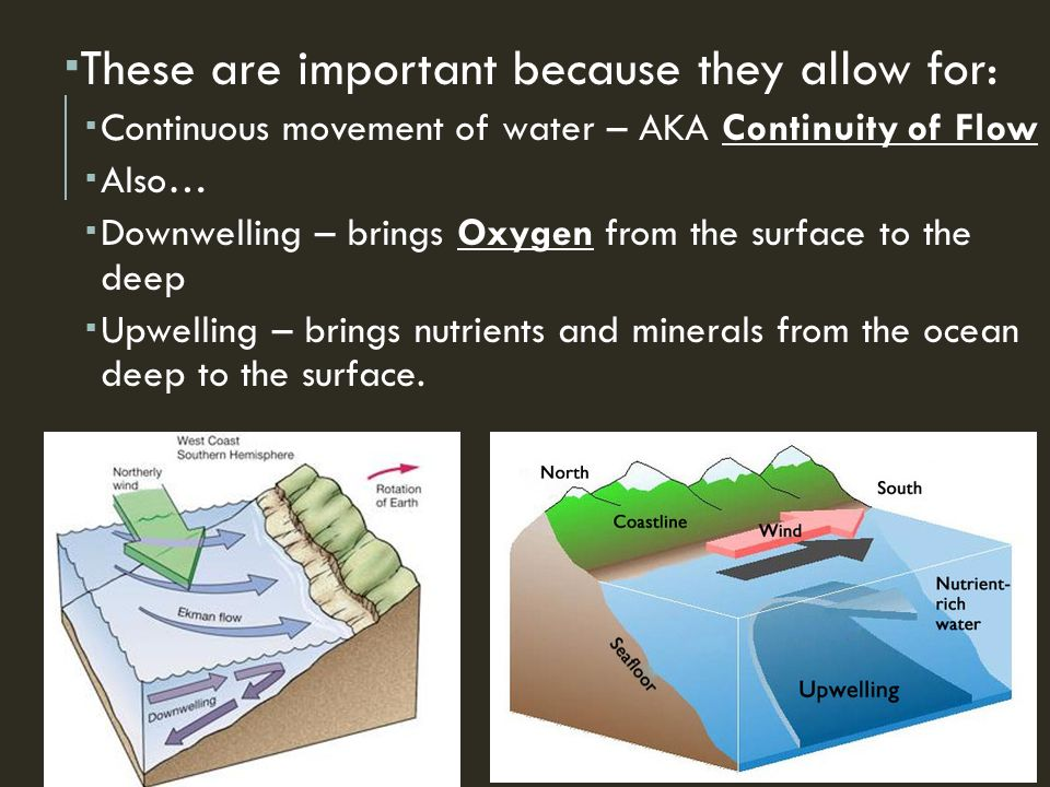  These are important because they allow for:  Continuous movement of water – AKA Continuity of Flow  Also…  Downwelling – brings Oxygen from the surface to the deep  Upwelling – brings nutrients and minerals from the ocean deep to the surface.