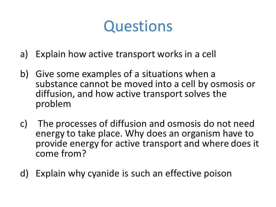 Osmosis homework worksheet – Diffusion and Osmosis Worksheet Answers