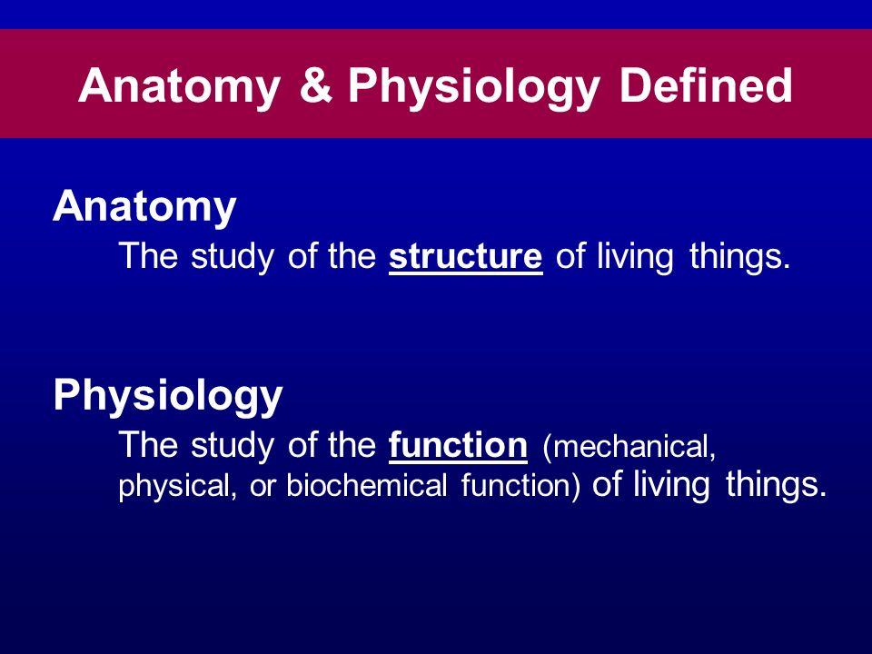 Anatomy & Physiology Larry Johnson, PhD Veterinary Integrative ...