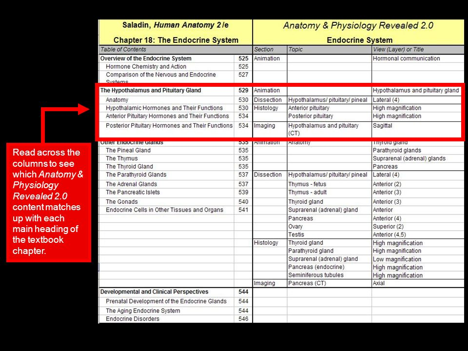 Using Anatomy & Physiology Revealed 2.0 Correlation Guides. - ppt ...