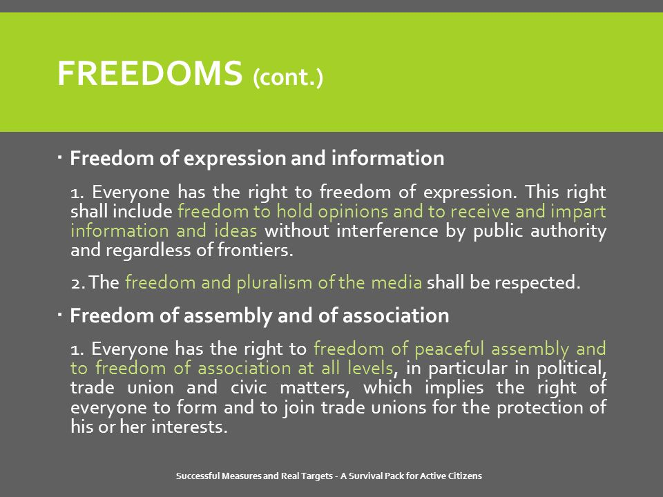 Successful Measures and Real Targets - A Survival Pack for Active Citizens FREEDOMS (cont.)  Freedom of expression and information 1.