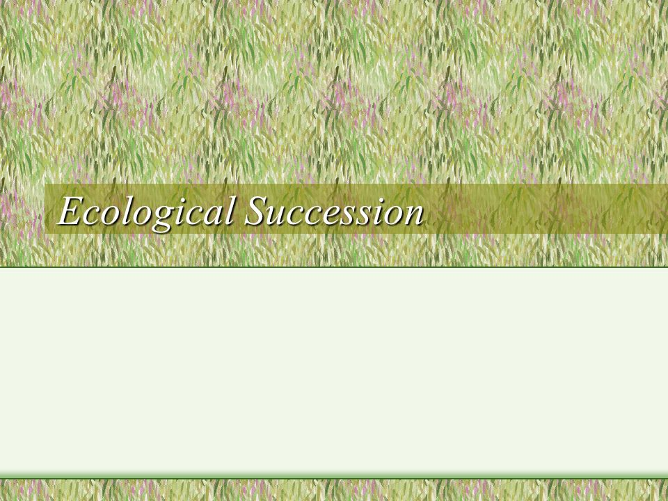 Ecological Succession. Succession Definition: The regular ...