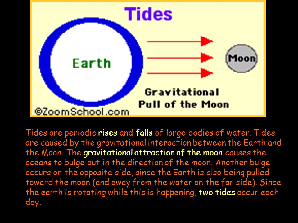 Tides are periodic rises and falls of large bodies of water.