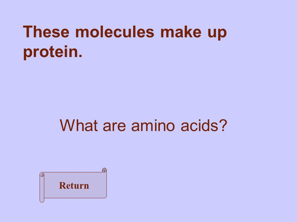 What are amino acids These molecules make up protein. Return