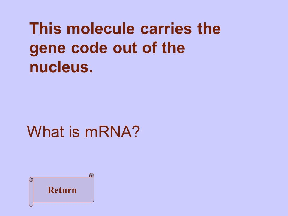 This molecule carries the gene code out of the nucleus. What is mRNA Return