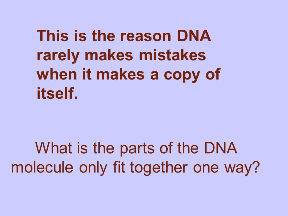 This is the reason DNA rarely makes mistakes when it makes a copy of itself.
