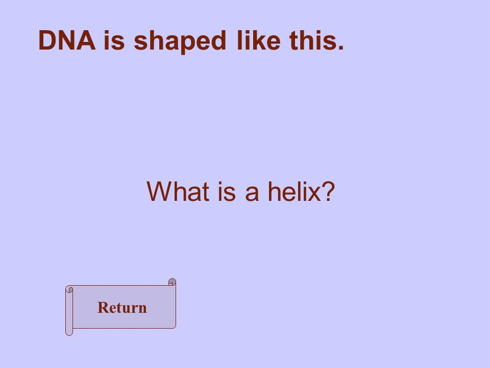 DNA is shaped like this. What is a helix Return