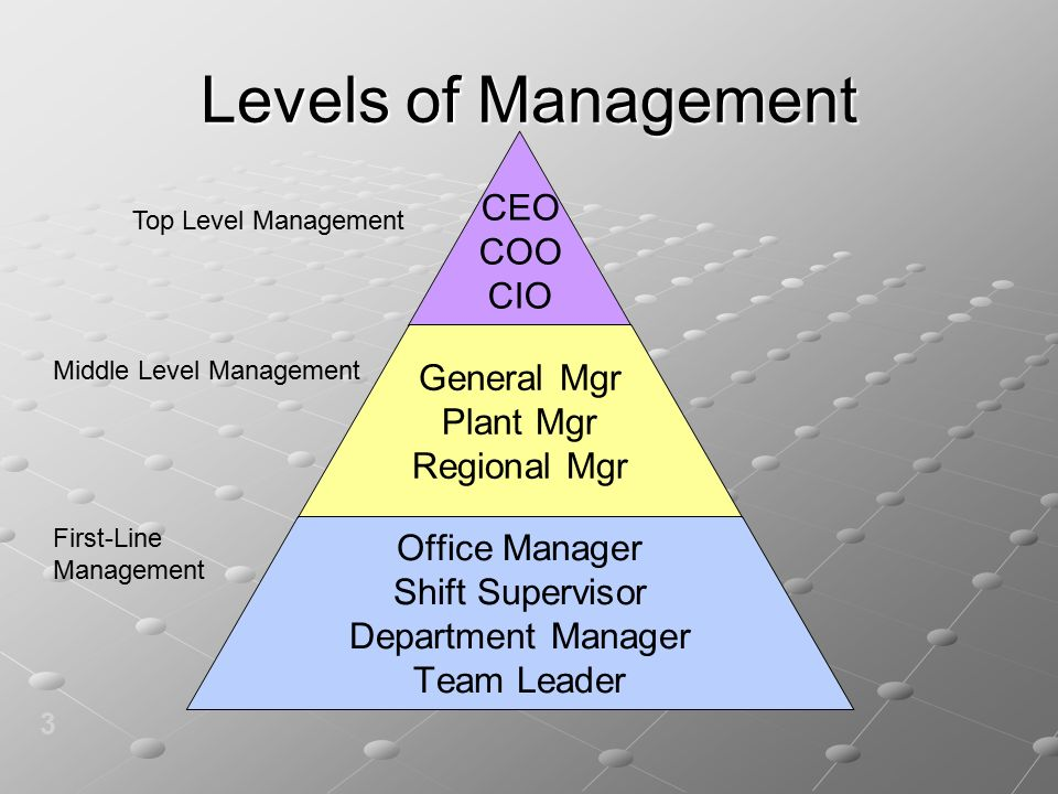 Levels of Management 3 CEO COO CIO General Mgr Plant Mgr Regional Mgr Office Manager Shift Supervisor Department Manager Team Leader Top Level Management Middle Level Management First-Line Management