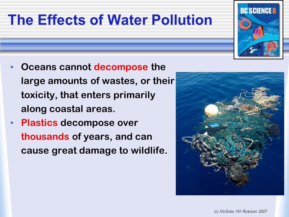 factors that causes water pollution and its effects on the world today Pollution and its effects on ecosystems by water pollution over two management is one of the main causes of environmental pollution and.