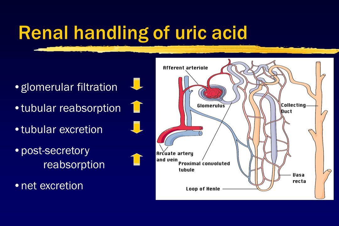 normal value of serum uric acid level alkaline water reduce uric acid normal serum uric acid in pregnancy