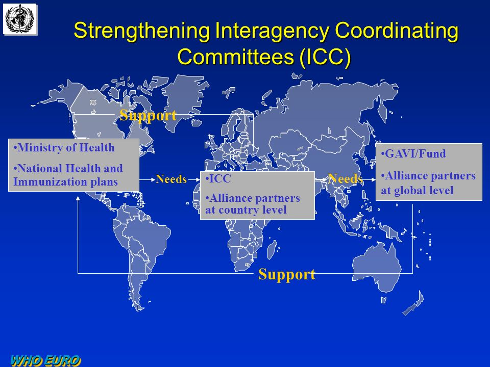 Strengthening Interagency Coordinating Committees (ICC) Strengthening Interagency Coordinating Committees (ICC) Ministry of Health National Health and Immunization plans ICC Alliance partners at country level GAVI/Fund Alliance partners at global level Support Needs