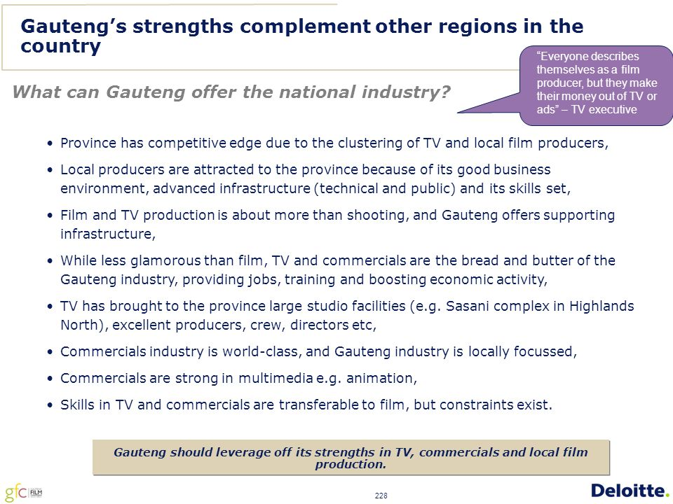 228 Gauteng's strengths complement other regions in the country What can Gauteng offer the national industry.