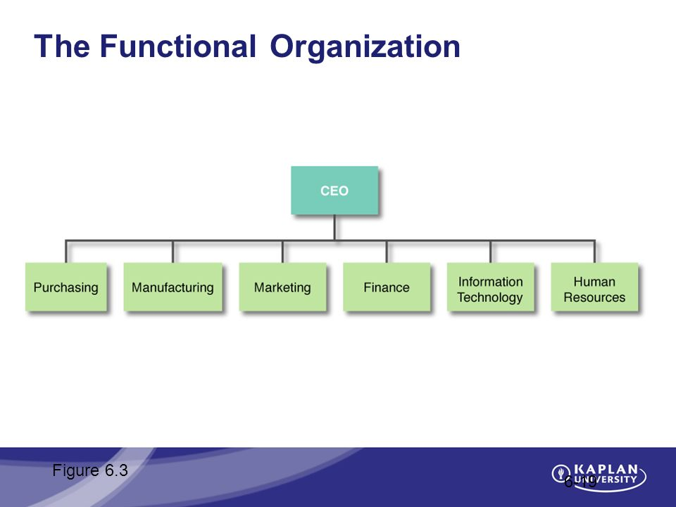 The Functional Organization 6-19 Figure 6.3