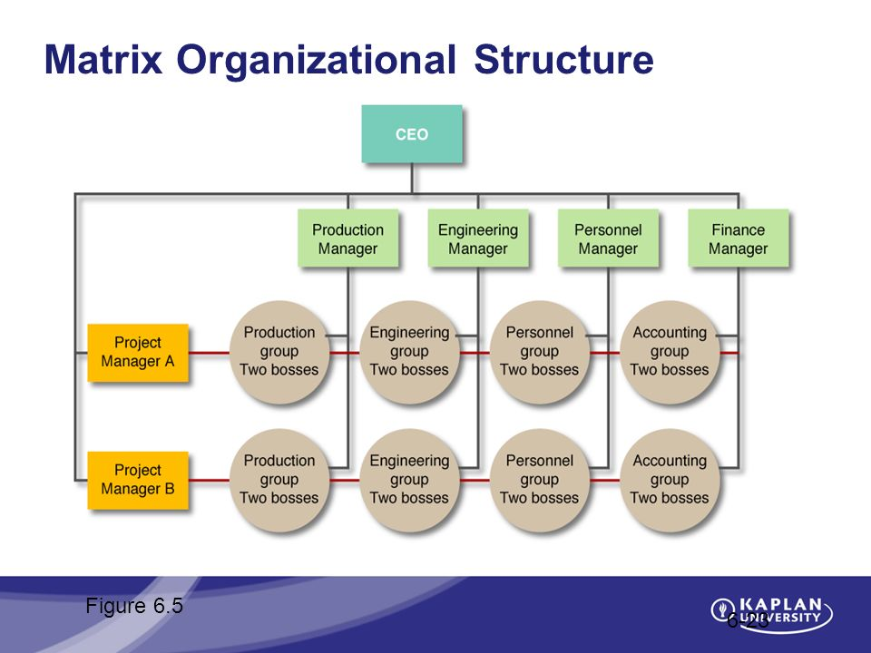 Matrix Organizational Structure 6-23 Figure 6.5
