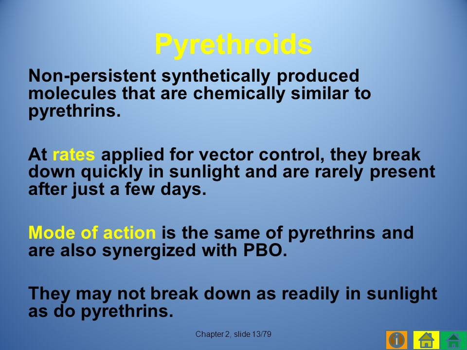 Non-persistent synthetically produced molecules that are chemically similar to pyrethrins.
