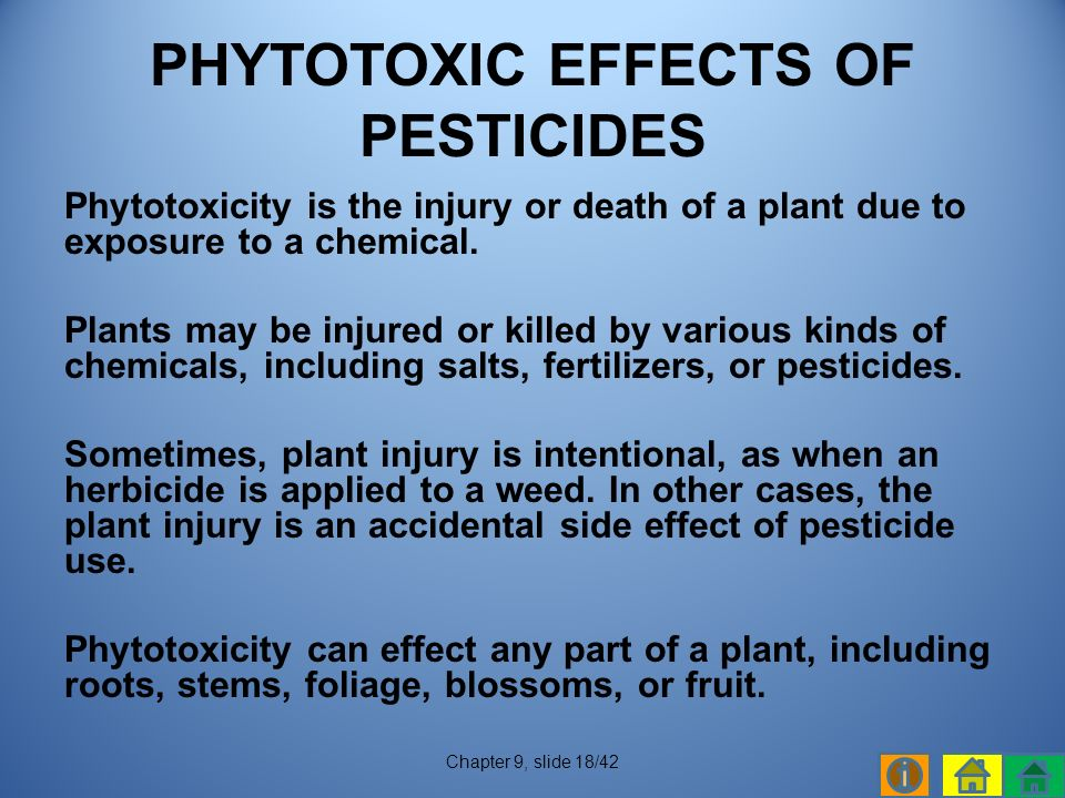Phytotoxicity is the injury or death of a plant due to exposure to a chemical.
