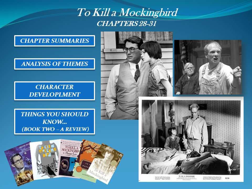 2 sentence summary for How To Kill A Mockingbird?