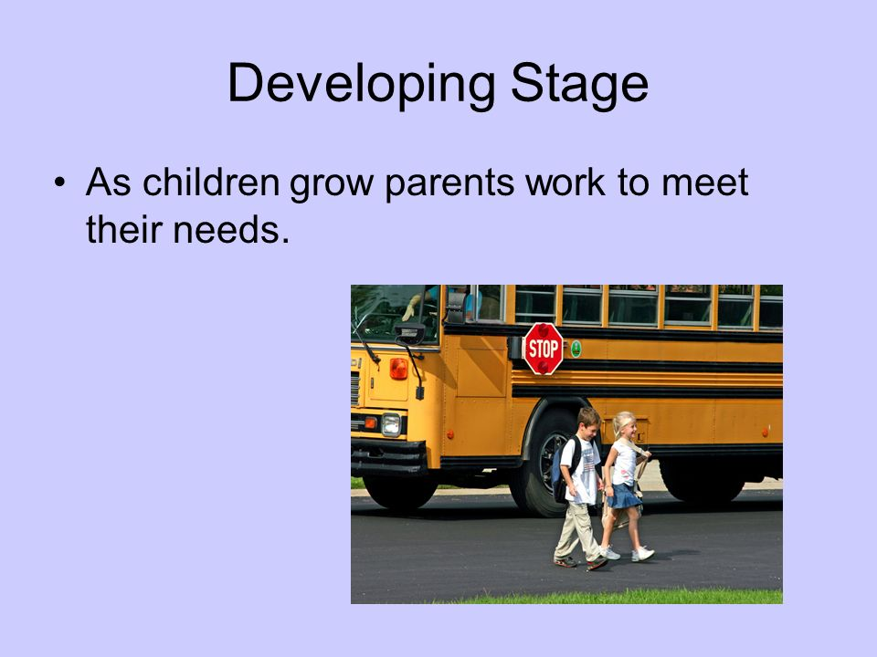 Developing Stage As children grow parents work to meet their needs.