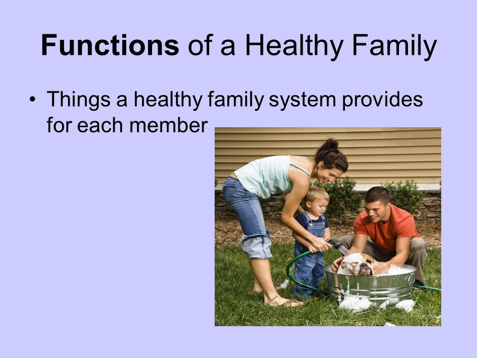 Functions of a Healthy Family Things a healthy family system provides for each member