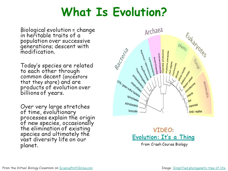 Biological evolution = change in heritable traits of a population over successive generations; descent with modification.