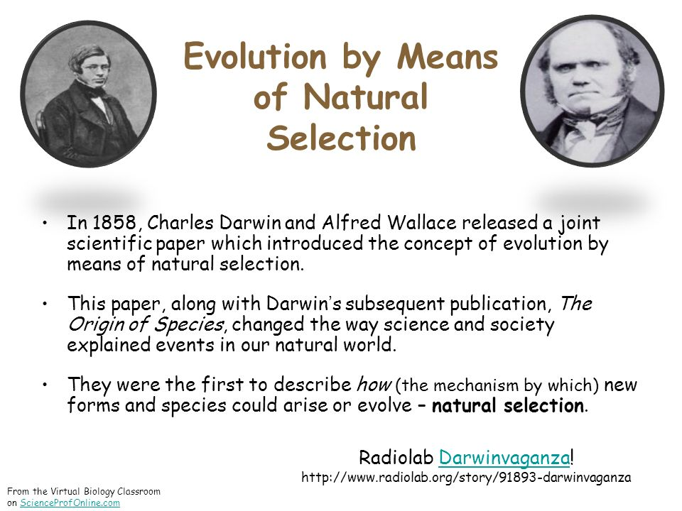 Evolution by Means of Natural Selection In 1858, Charles Darwin and Alfred Wallace released a joint scientific paper which introduced the concept of evolution by means of natural selection.