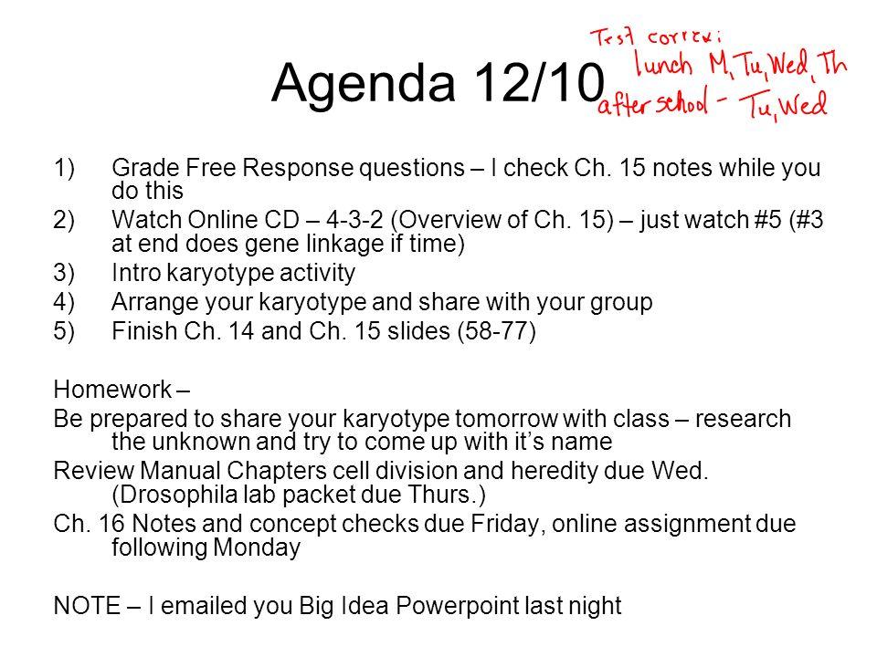 Karyotyping Activity Coursework Academic Service. Karyotyping Activity. Worksheet. Karyotype Activity Worksheet At Clickcart.co