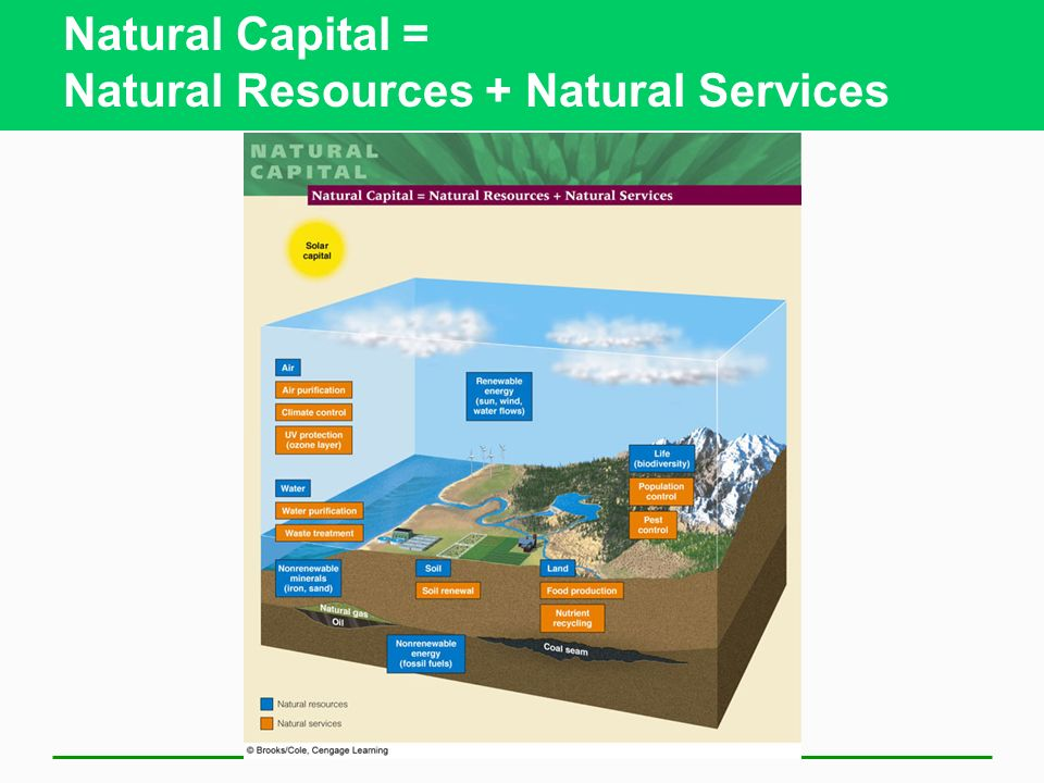 Natural Capital = Natural Resources + Natural Services