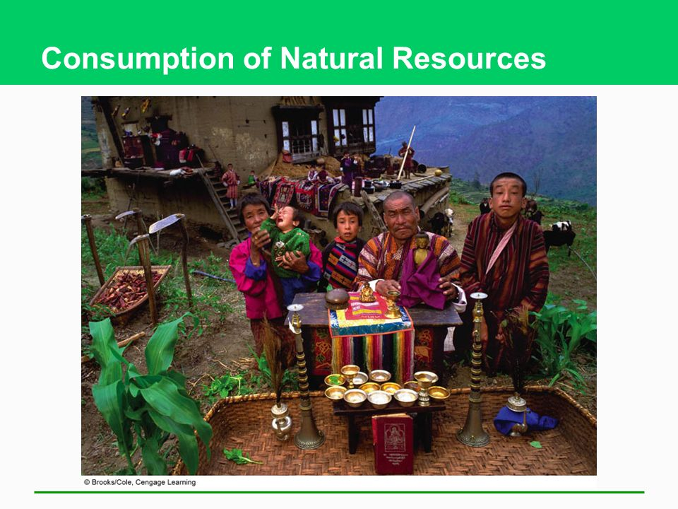 Consumption of Natural Resources