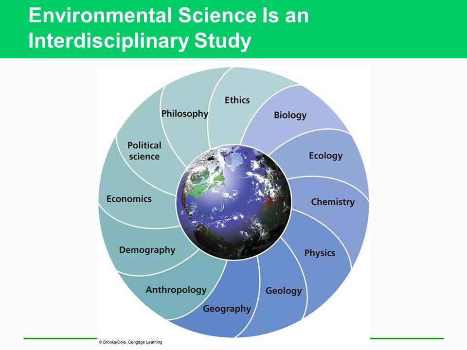 Environmental Science Is an Interdisciplinary Study