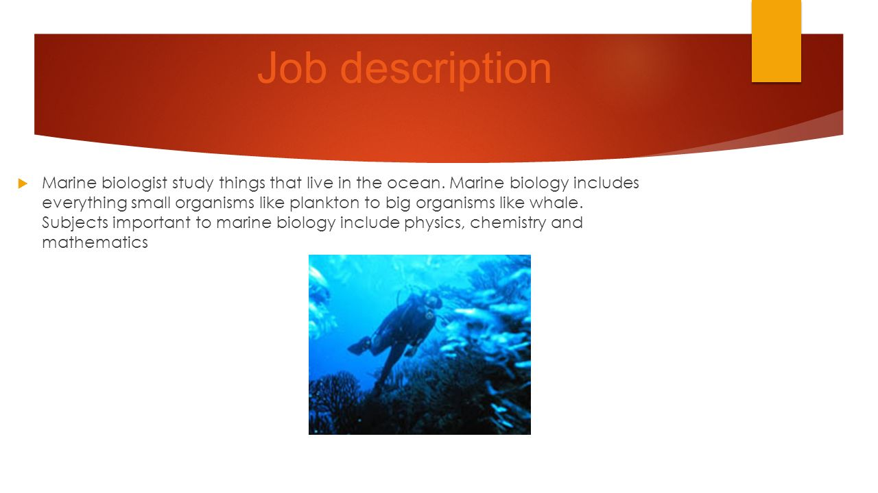 Marine biologist BY NATHAN GUYTON Job description Marine – Marine Biologist Job Description