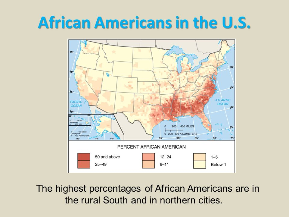 african americans in the u s 2 essay