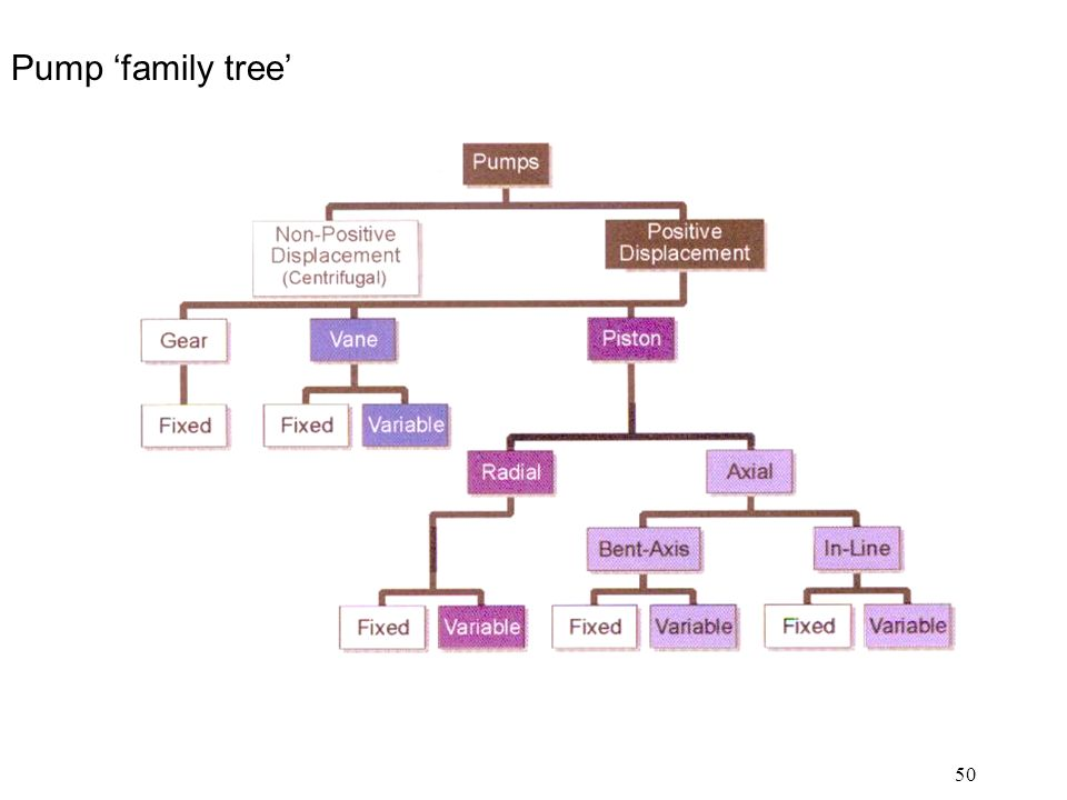 50 Pump 'family tree'