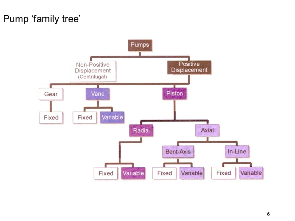 6 Pump 'family tree'